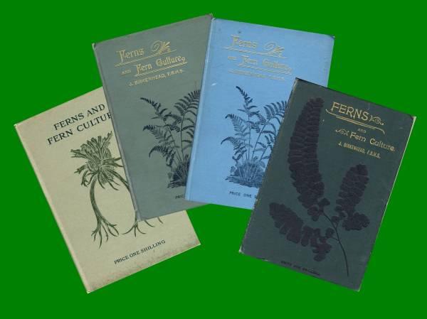 The Birkenhead Books