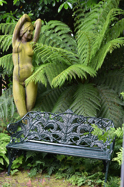 Picture of Jo and Ashley Basil's garden showing tree fern, fern bench and statue