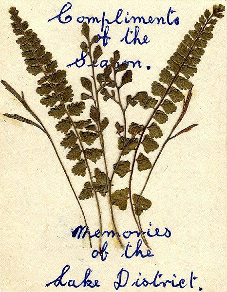 Christmas card made by Fred Jackson of Stonethwaite, Borrowdale