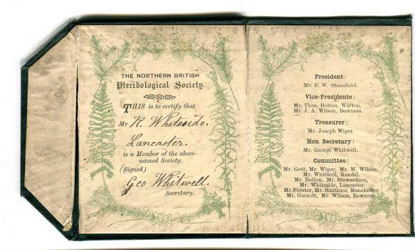 Whiteside's ornately decorated card