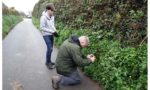2015: Guernsey, George watches Tim photograph <i>Anogramma leptophylla</i>