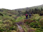 2017: Sao Miguel, Azores, on the path to Pico da Vara