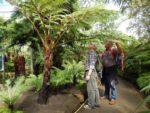 Tim and Roger at Glasgow Botanic Gardens