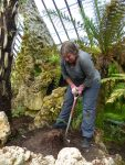 Natalie tackling the tree fern stump