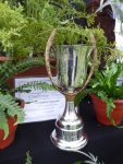 The Happiland Trophy for the most 1st prizes in classes 6 - 10